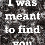 I was meant to find you